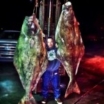 240 lb. Halibut Delivered to Elliot's Oyster House