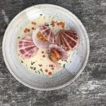 Pink Scallops Return to Seattle Menus